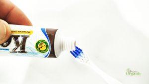 natural-organic-cedar-nut-toothpaste-018
